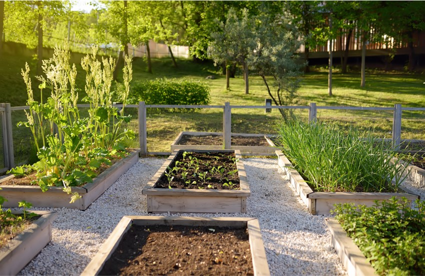 Alles voor in de tuin