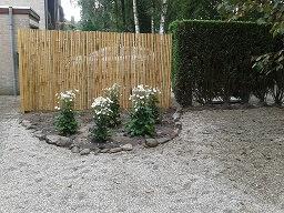 Foto beplanting