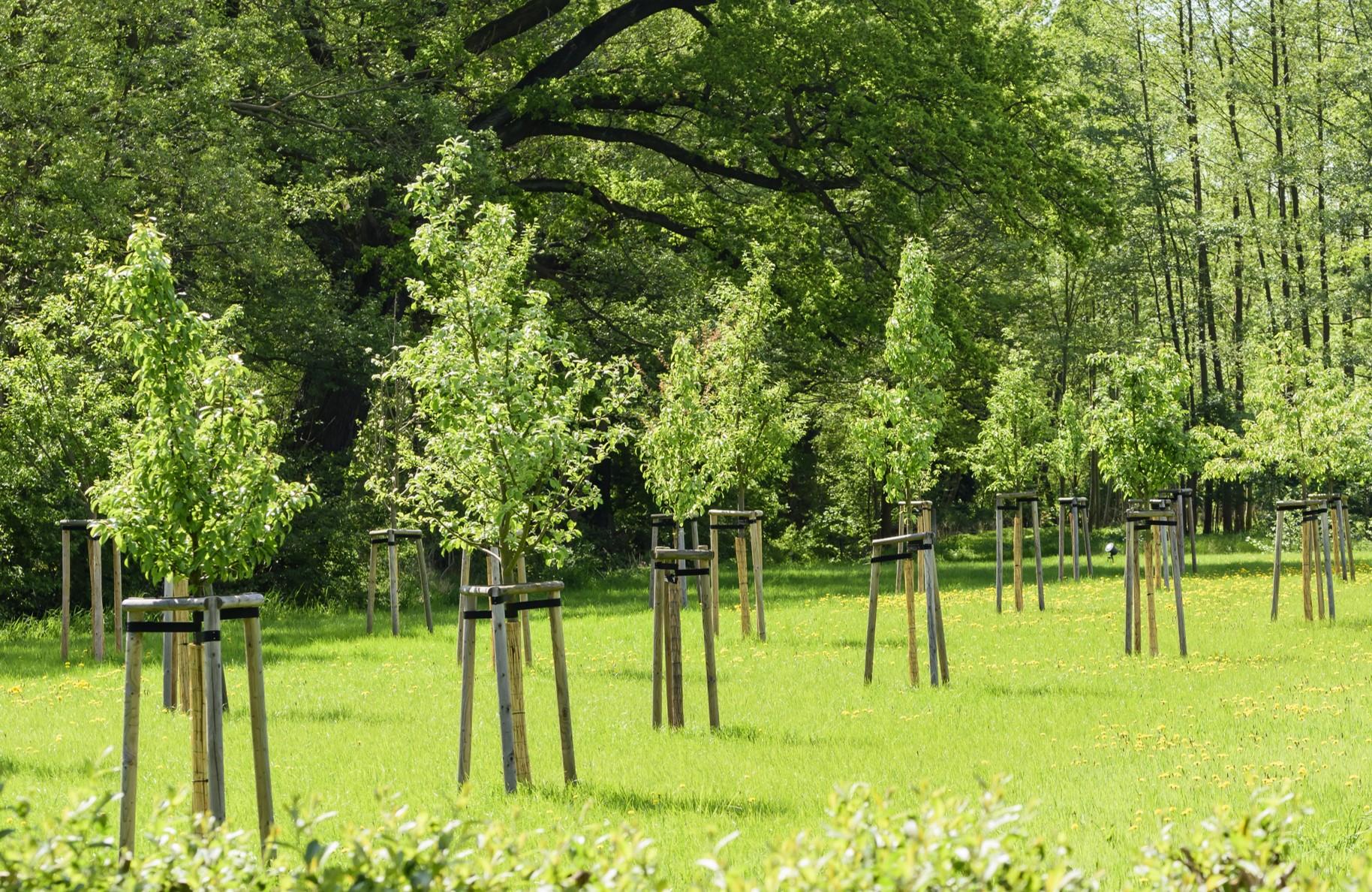 Duurzame plantenbescherming